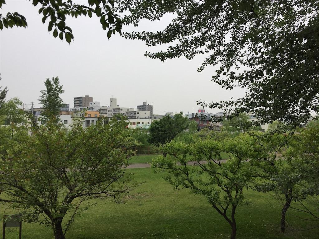 f:id:oomotoyoshinori:20170601073753j:image