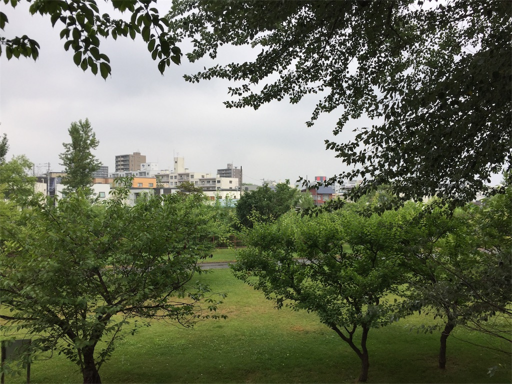 f:id:oomotoyoshinori:20170716100446j:image