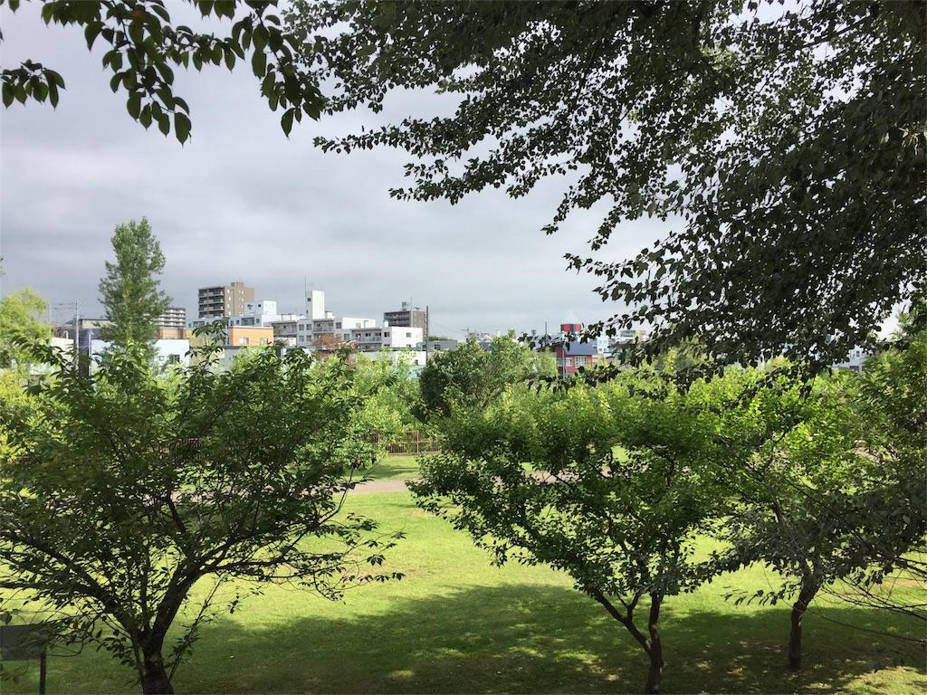 f:id:oomotoyoshinori:20170803080633j:image