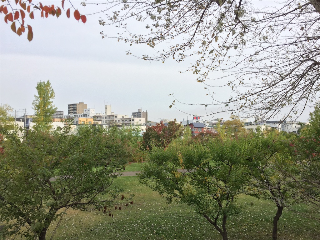 f:id:oomotoyoshinori:20171009084052j:image