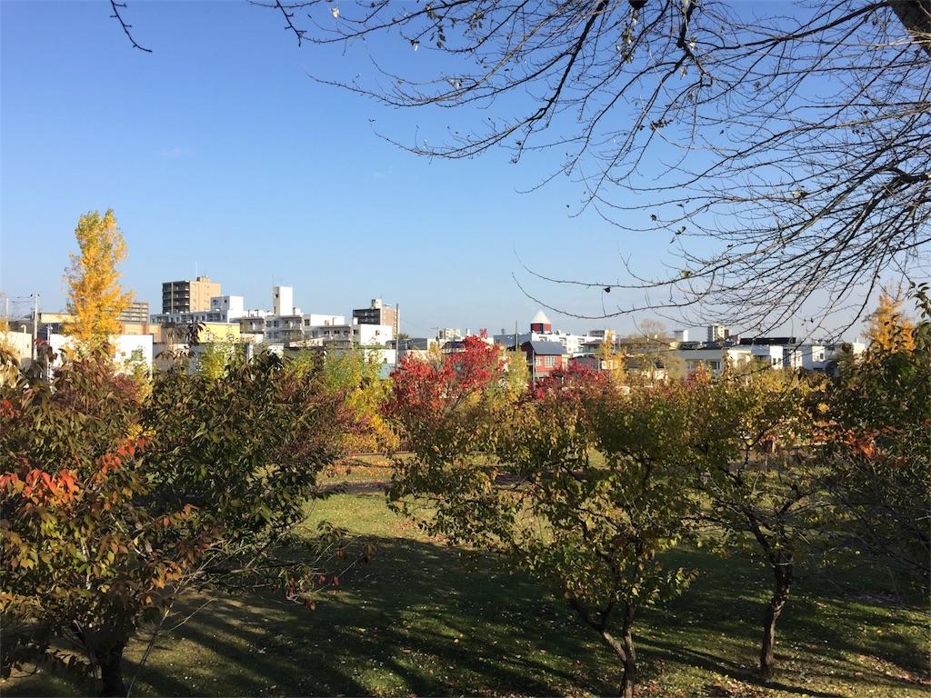 f:id:oomotoyoshinori:20171024083120j:image