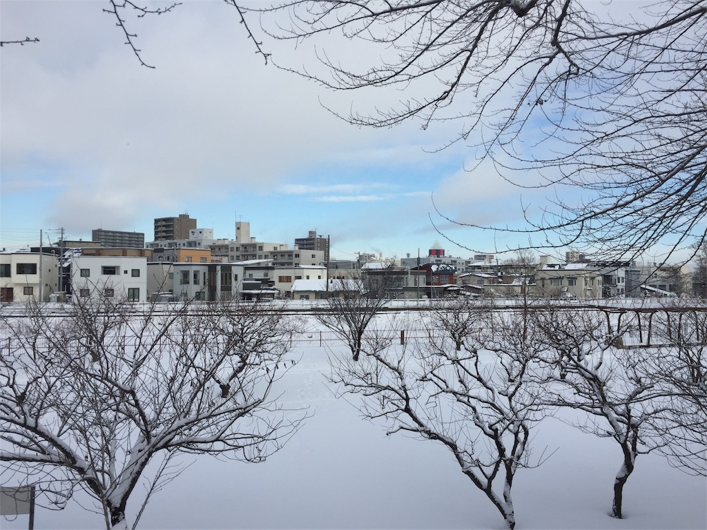 f:id:oomotoyoshinori:20171230100135j:image