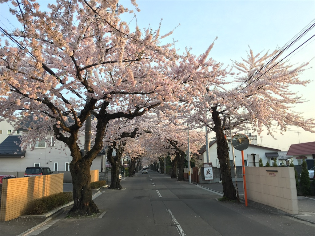 f:id:oomotoyoshinori:20180502065632j:image