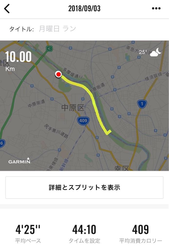 f:id:oooka-ryo:20181204095250j:image