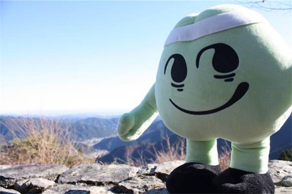 f:id:oooka-ryo:20190216180218j:image