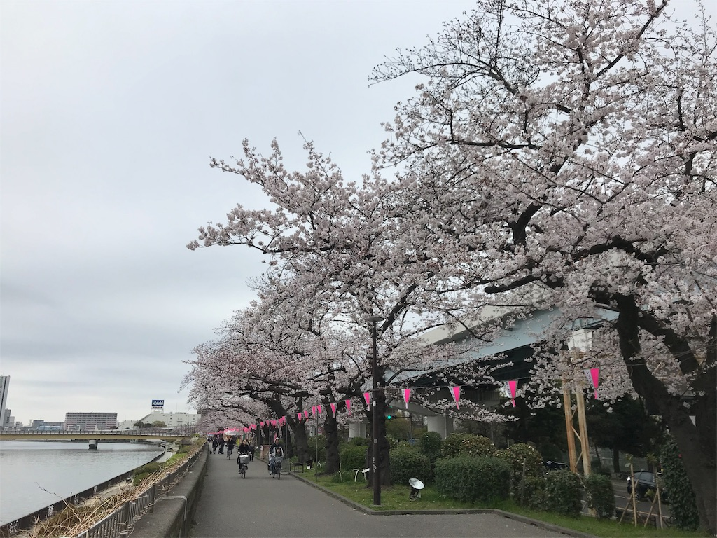 f:id:oooka-ryo:20190329173434j:image