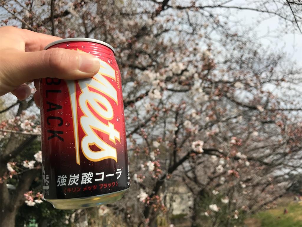 f:id:oooka-ryo:20190330172911j:image