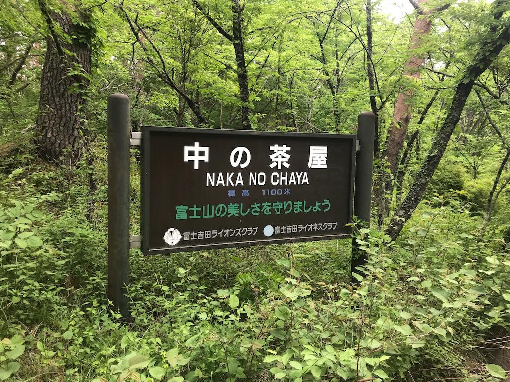 f:id:oooka-ryo:20190604174921j:image
