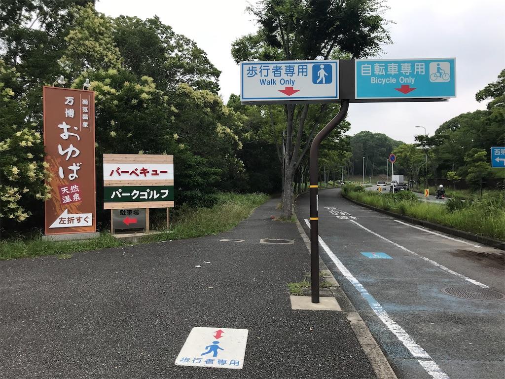 f:id:oooka-ryo:20190703142019j:image