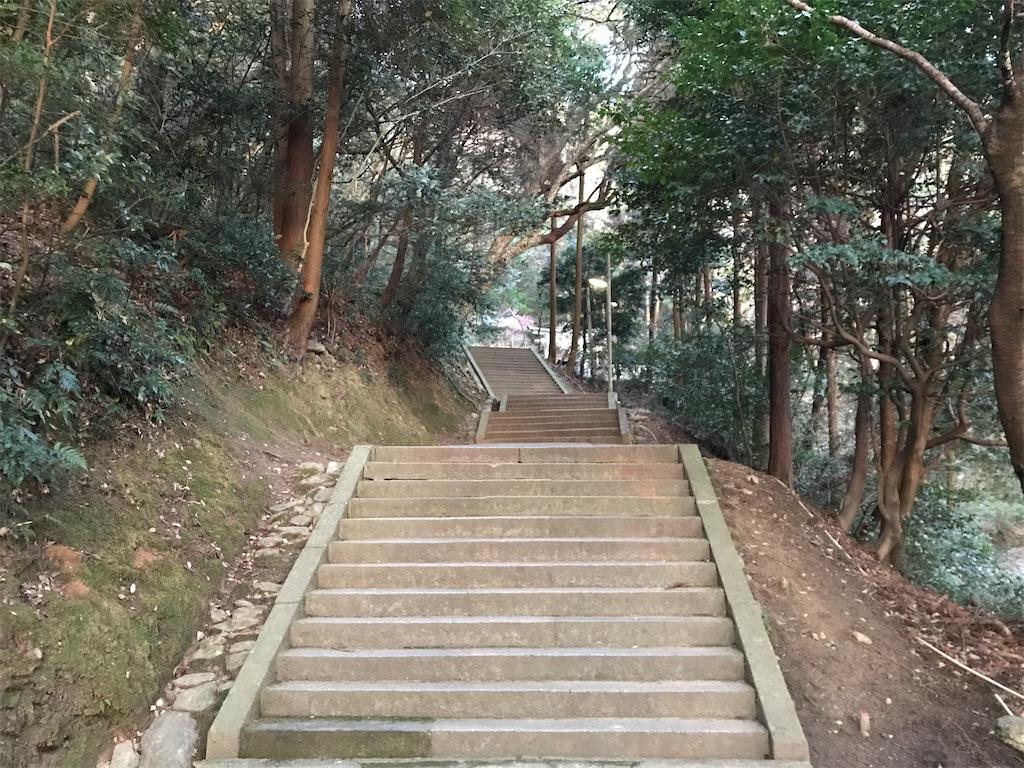 f:id:oooka-ryo:20200221161123j:image