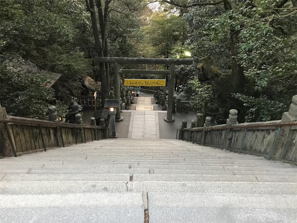 f:id:oooka-ryo:20200221161455j:image