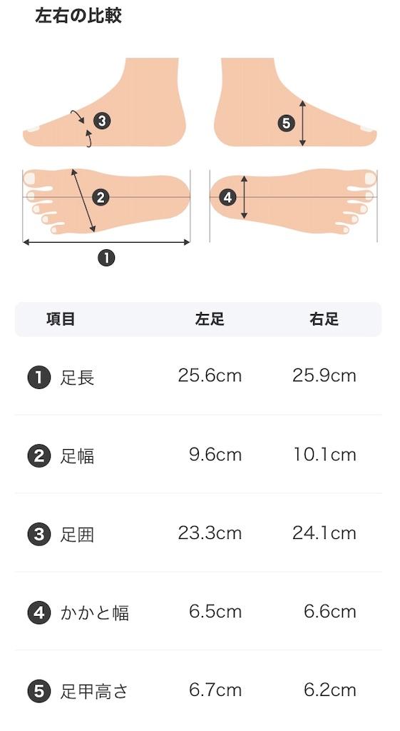 f:id:oooka-ryo:20200321121751j:image