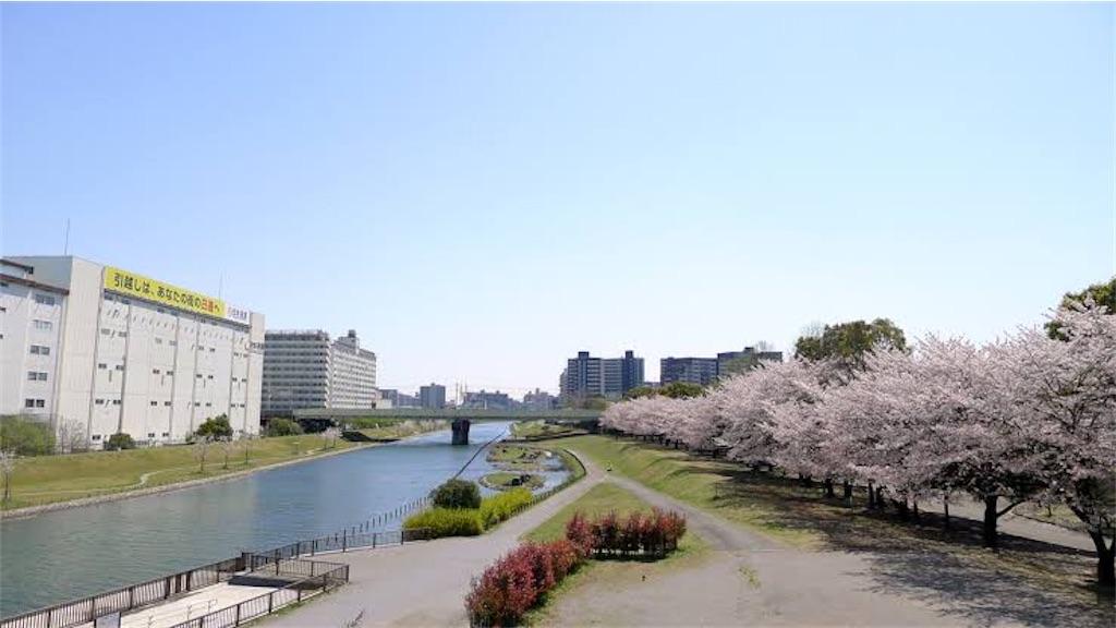 f:id:oooka-ryo:20200402203705j:image