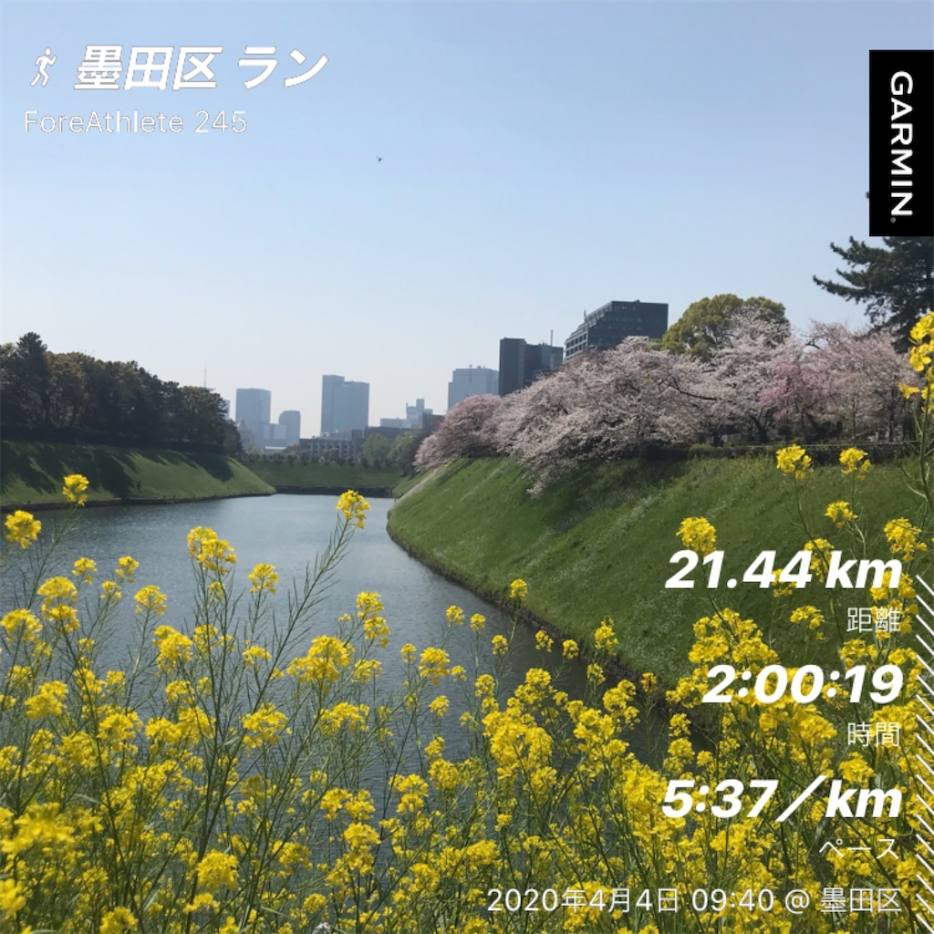 f:id:oooka-ryo:20200404182655j:image