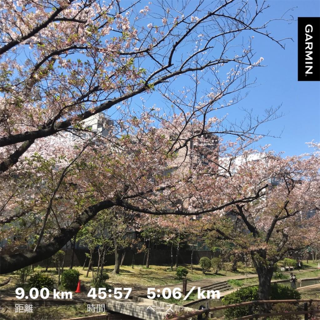 f:id:oooka-ryo:20200407192736j:image