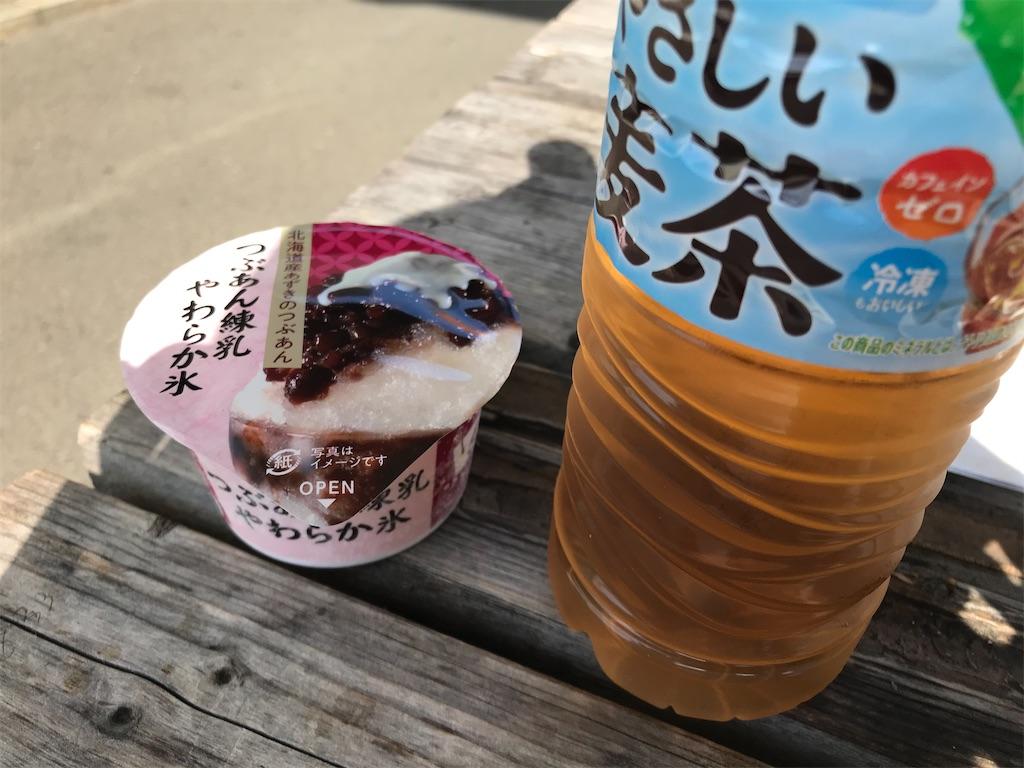 f:id:oooka-ryo:20210618170121j:image