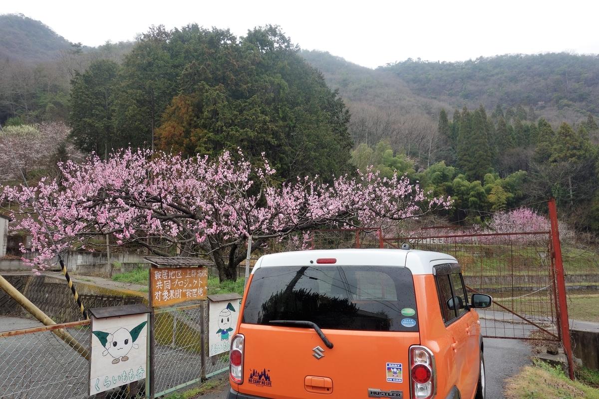 f:id:oosawatomohiro-sportsclub:20210328143057j:plain