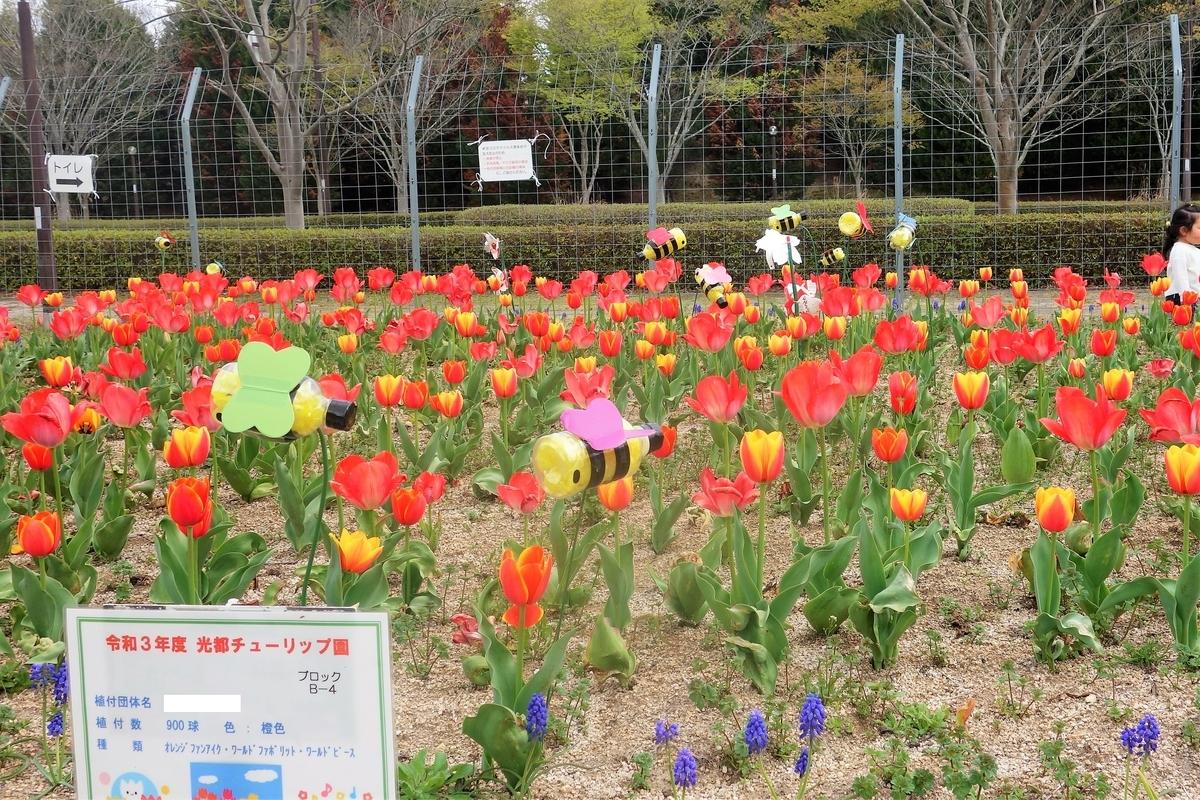 f:id:oosawatomohiro-sportsclub:20210404021235j:plain