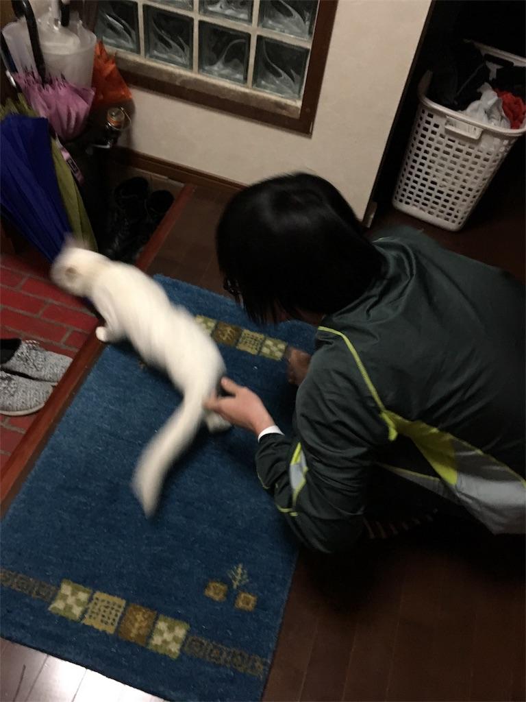 f:id:ootake_isuke:20161216025046j:image
