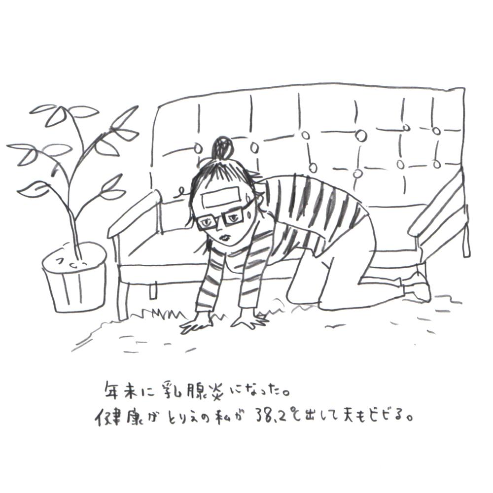 f:id:ooyuuko:20170113113911j:plain