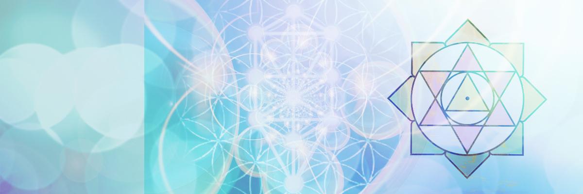New Life Meditation | ニューライフ瞑想