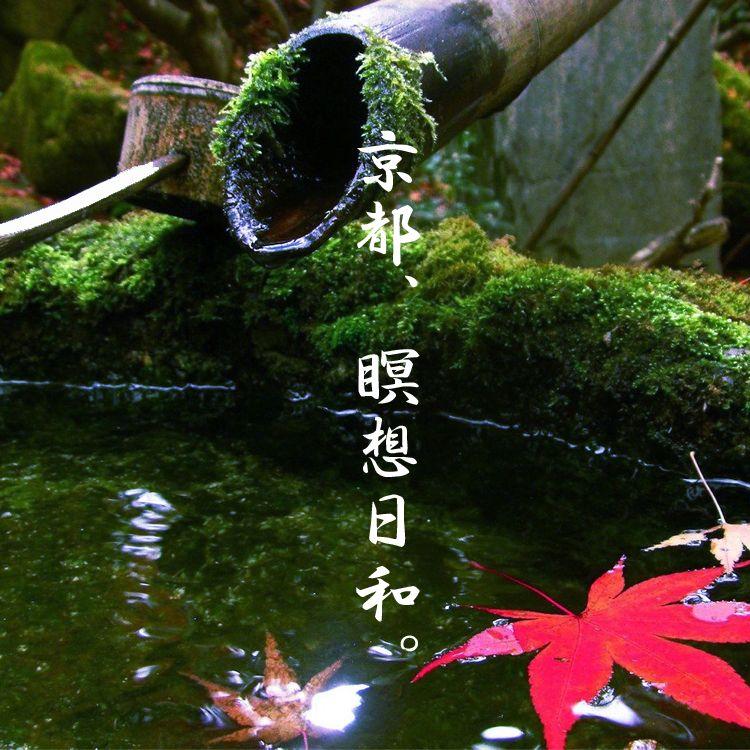 ボブ・フィックス 京都瞑想リトリート