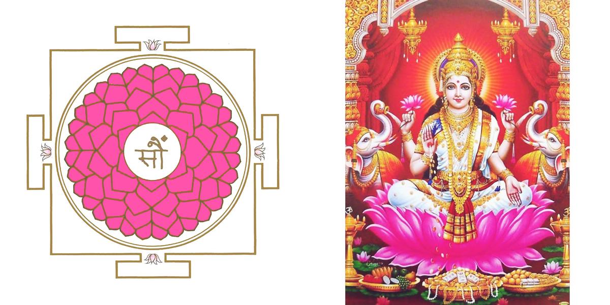 Lotus Meditation Workshop For Women