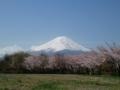 Photo by emiさん