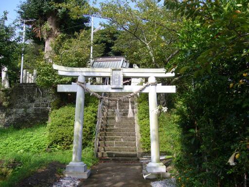 kokusijinja-torii