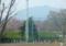 京都新聞写真コンテスト ポカポカの春きたる。