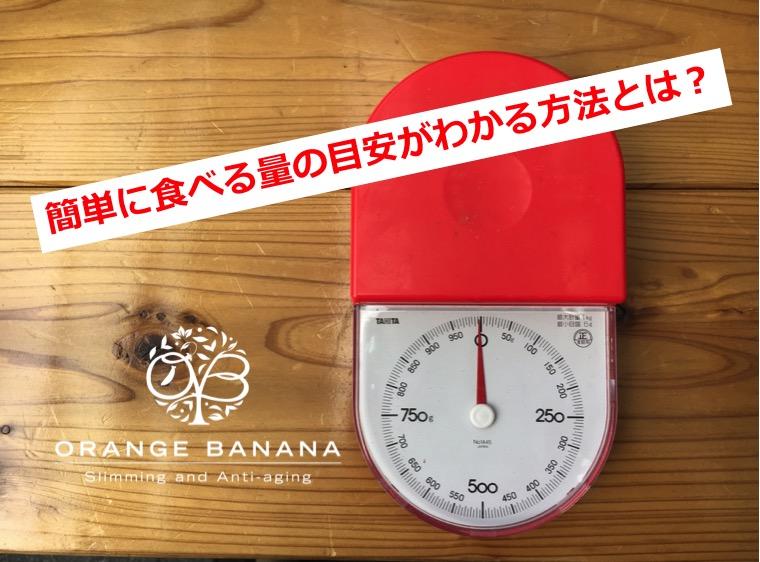 f:id:orangebanana_niigata:20170406190726j:plain