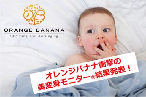 f:id:orangebanana_niigata:20170406191030j:plain