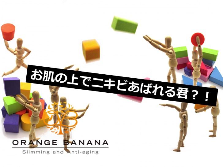 f:id:orangebanana_niigata:20170417181101j:plain