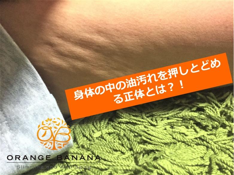f:id:orangebanana_niigata:20170530115212j:plain