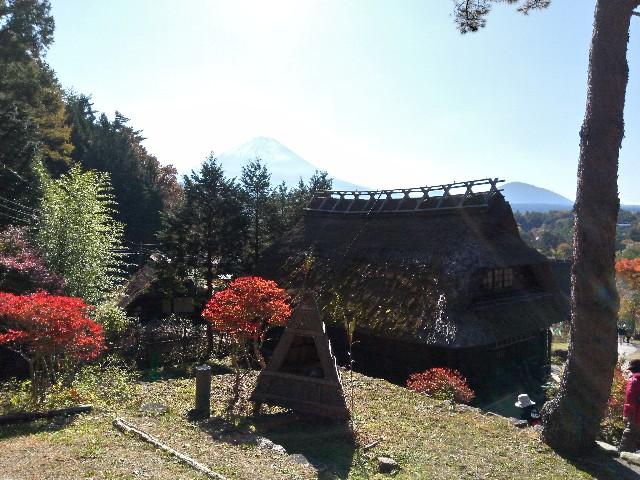 f:id:orangenoyume:20191202051143j:image