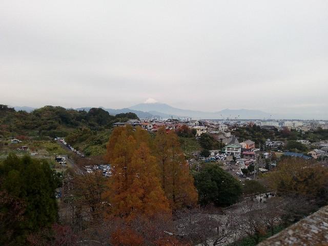 f:id:orangenoyume:20191208183557j:plain