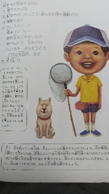 f:id:orangenoyume:20200822000815j:plain