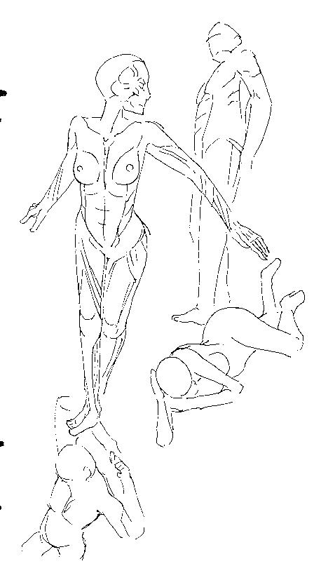 f:id:orangestar:20160703054527p:plain