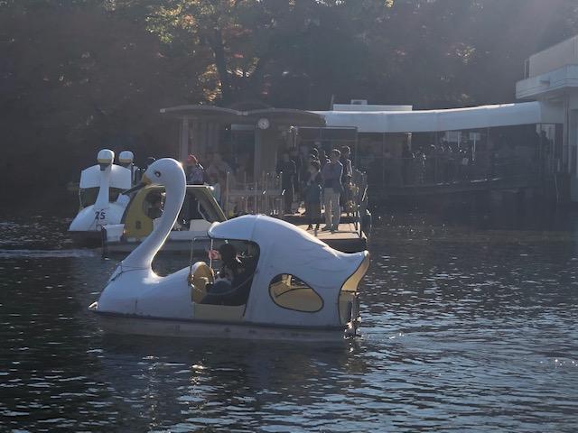 井の頭公園(ボート乗り場)