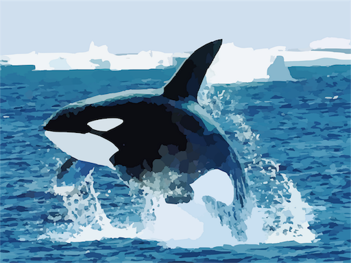 f:id:orca2ya:20190105122643p:image