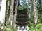 羽黒山の五重塔。巨木の杉並木に囲まれて。