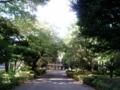 [目白周辺] 2009年7月25日、百周年記念会館〜正門に至る道。