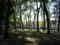 ブルージュ。ベギン教会の中庭。静か〜。