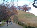 [散歩] 2012年11月25日、さきたま古墳公園。丸山墓古墳。