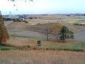 [散歩] 2012年11月25日、さきたま古墳公園。