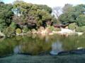 [museum] 2014/03/15、上野の東京博物館、春の庭園開放。