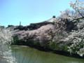 [散歩]2014/03/31、皇居北の丸のお堀にて。