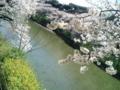 [散歩] 2014/03/31、皇居北の丸のお堀にて。