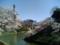 2014/03/31、皇居北の丸のお濠より。