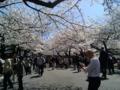 [散歩] 2014/03/31、皇居北の丸公園、入口。